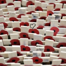 Field of Remembrance, Westminster